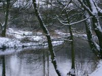 Winter_in_Melbeck_027